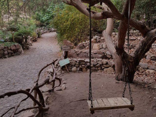 Înapoi în Israel, în Eilat – Grădina Botanică (ep 11)