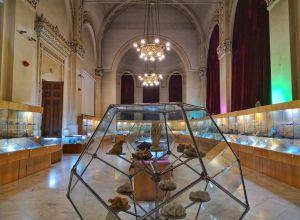 Muzeim prin București: Muzeul Național de Geologie