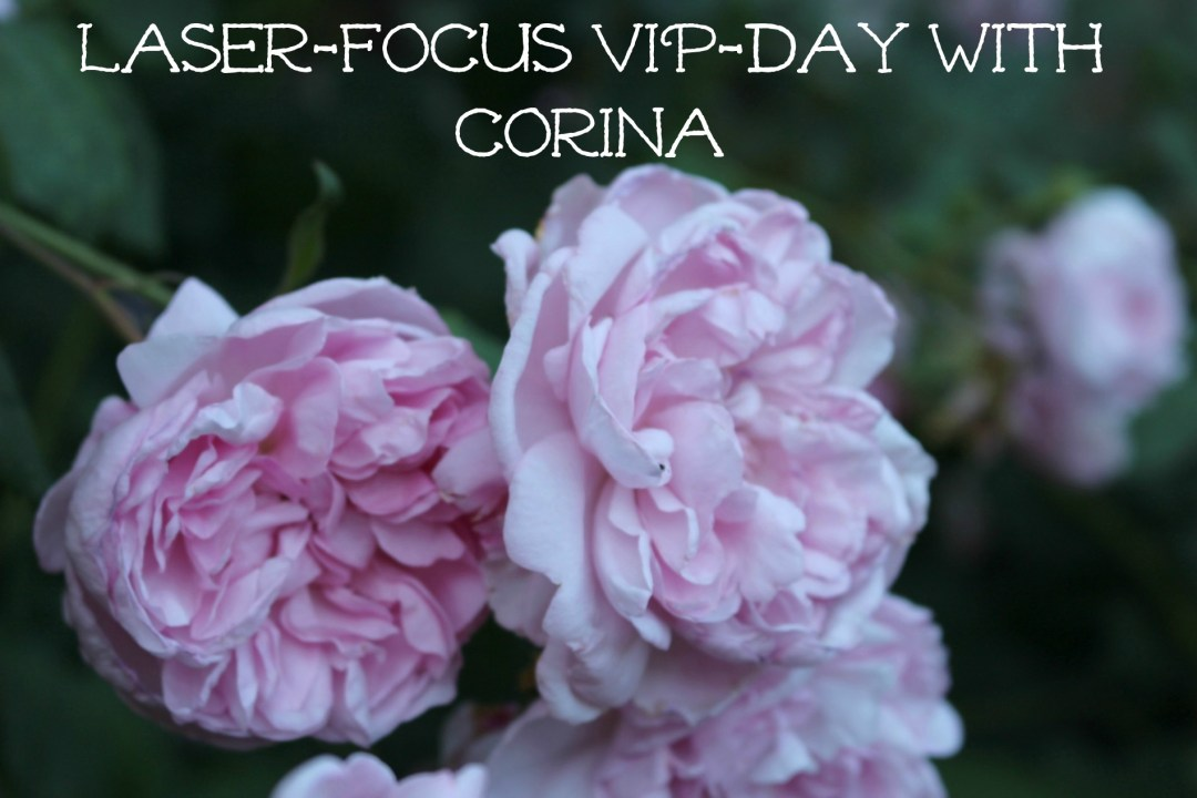 VIP coaching day with Corina Sahlin