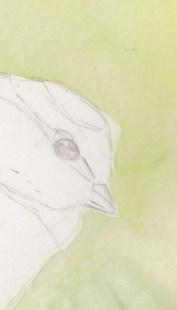 Apr19_painting pimpelmees layer1_detail