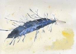 Mar29_feather in watercolor