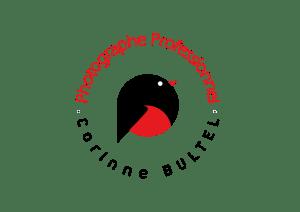 logo Corinne Bultel photographe