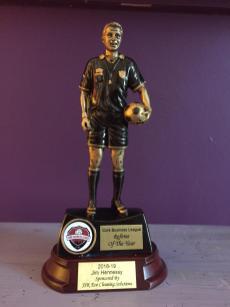 awards (6)