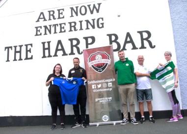 Harp Bar pic 2