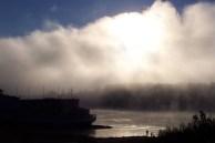 Goldenrod Showboat in Fog