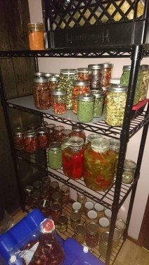 Dry storage & ferments