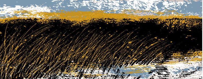 Reed Bed III Lough Erne