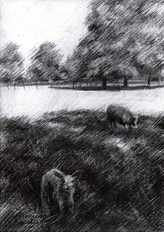 impressionistic graphite pencil drawing of sheep and trees