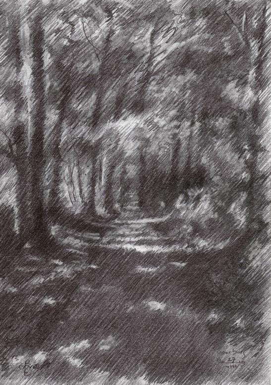 impressionistich treescape graphite pencil drawing