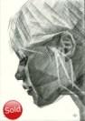 Cubistic portrait graphite pencil drawing thumbnail of brigitte bardot