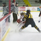 The Red will end its regular season with a pair of ECAC games this weekend against Dartmouth and Harvard.
