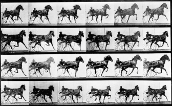 Photo Courtesy of Eadweard Muybridge