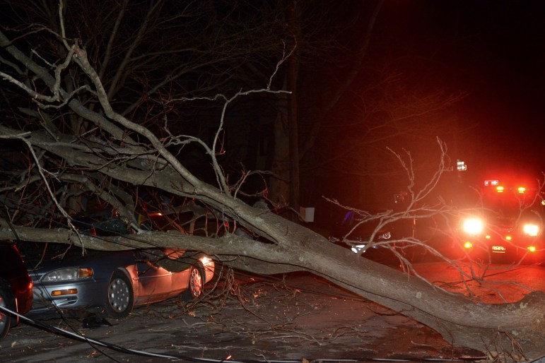 The fallen tree crushed a Camry and scratched an Ithaca College student's car.