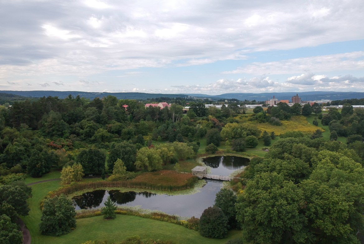 The F.R. Newman Arboretum, which will be the site of the Walk for Dave this weekend, September 7th, 2017.