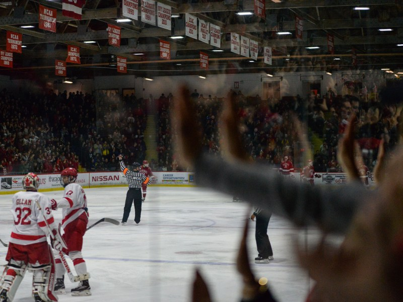 The Lynah Faithful looks on during last year's Harvard game, a 4-1 loss to the Crimson.