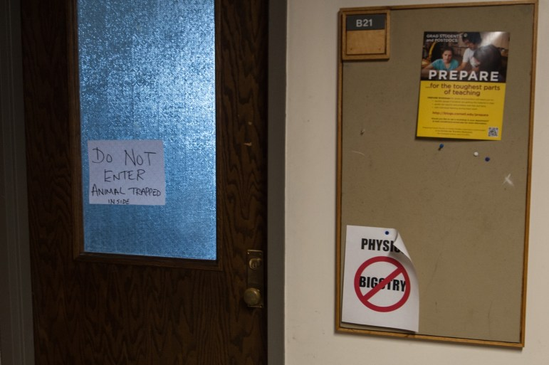 """""""ANIMAL TRAPPED INSIDE,"""" said a sign on Room B21 of Rockefeller Hall, where a deer was stuck after leaping through the room's outside window."""