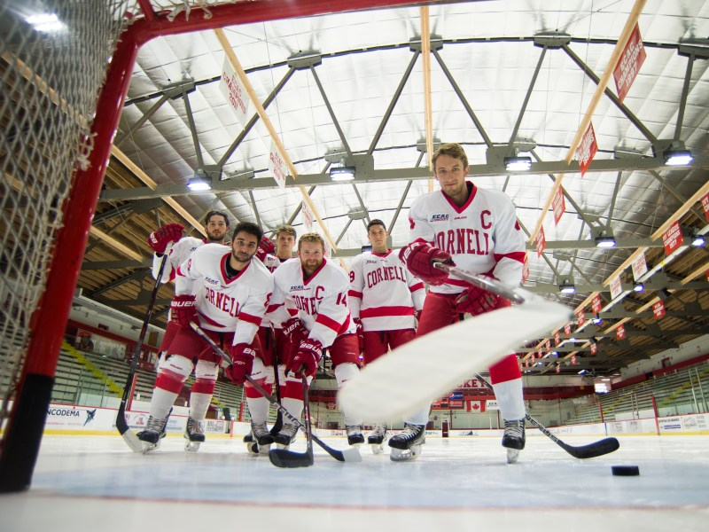 Cornell had the winning percentage in college hockey this season.