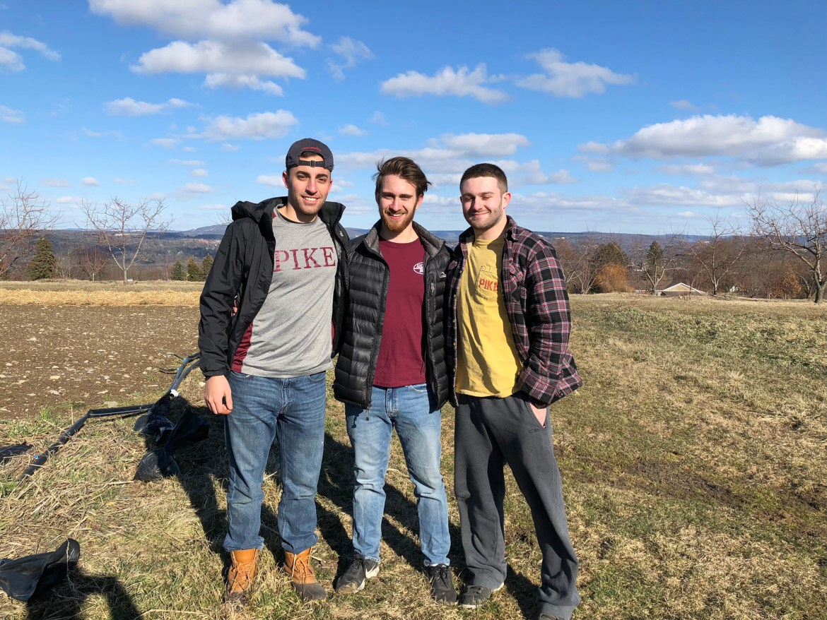 PIKE brothers went to Westhaven farm to volunteer on Saturday.