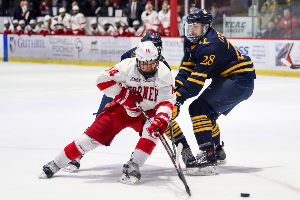 Senior forward Mitch Vanderlaan is the latest in a string of injuries for Cornell after he left the loss to Dartmouth in the first period.