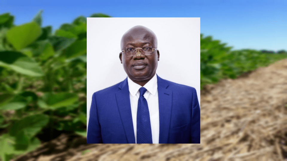 Eric Yirenkyi Danquah, a Cornell partner, was the first African award recipient of the 2018 GCHERA World Agriculture Prize