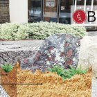 """The """"Crystalline Basement"""" exhibition featured massive rocks surrounded by plants on the Engineering Quad, as well as an accompanying film shown in Klarman Hall."""