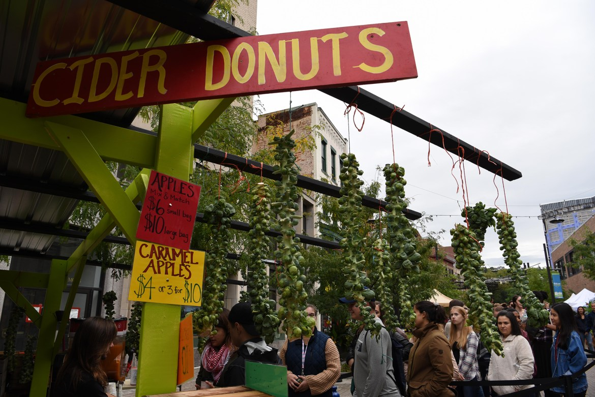 Apple Fest is a locally beloved tradition highlighting New York's favorite fruit.