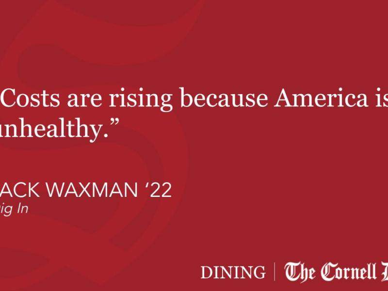 DIG IN_The Health Care Debate Forgets About Health