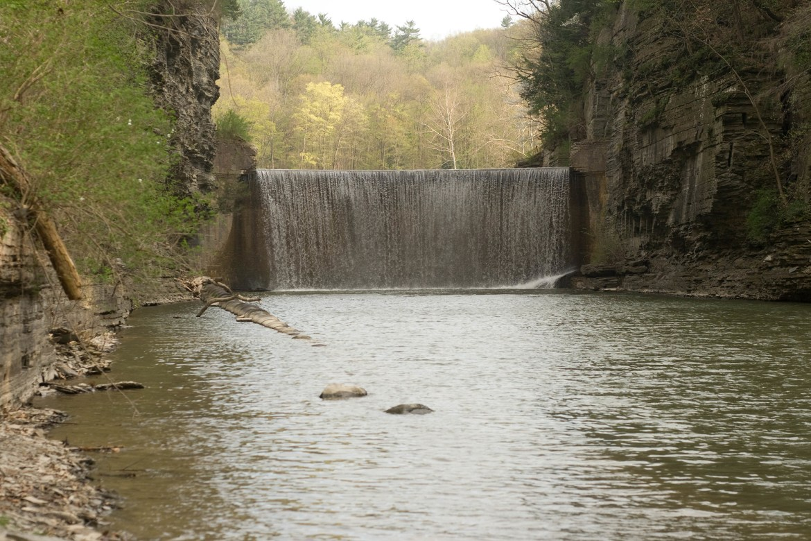 Firefighters rescued a woman who had fallen down a 40-foot embankment at Six Mile Creek Gorge.