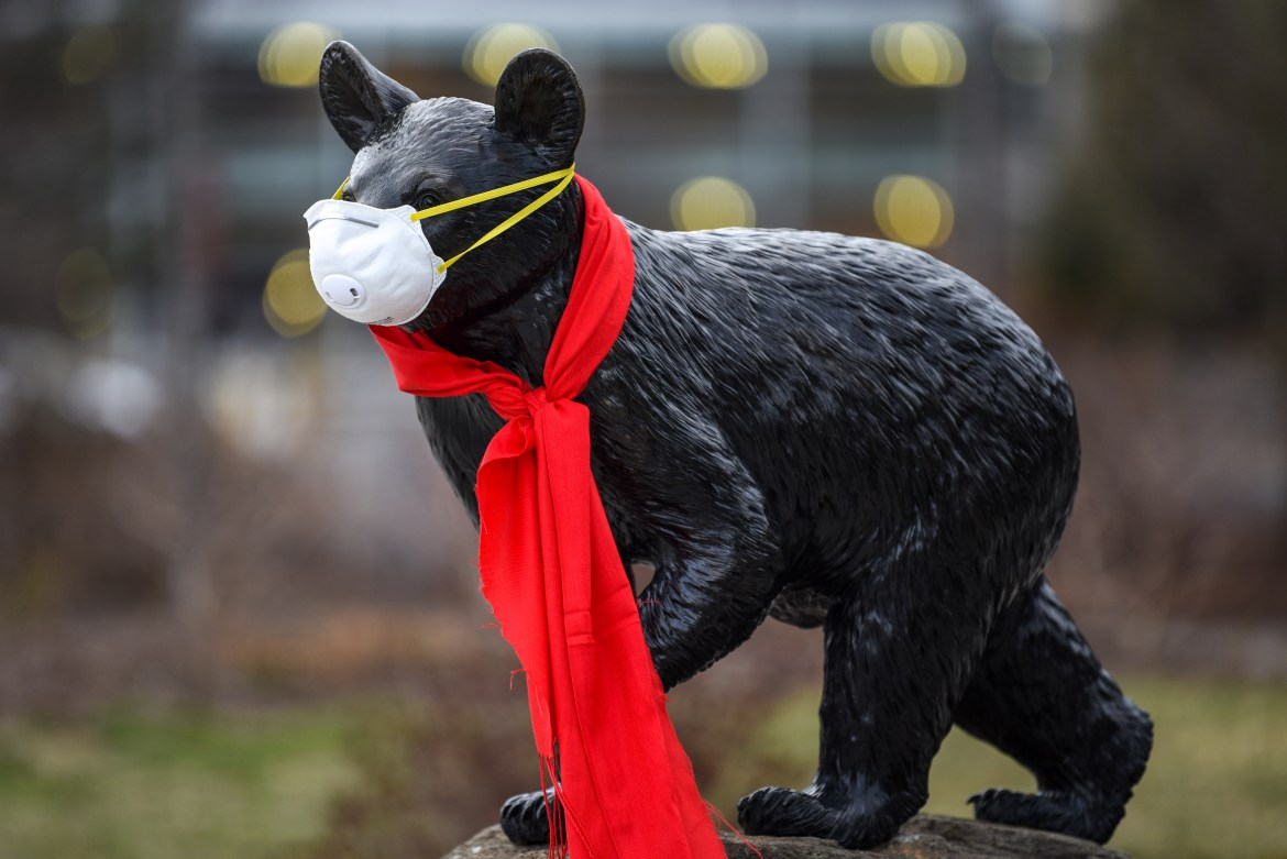 The Touchdown statue by Teagle Hall sports an N95 respirator on March 17. A shortage of masks and other supplies to fight the pandemic have spurred Cornell labs into donating to the cause.