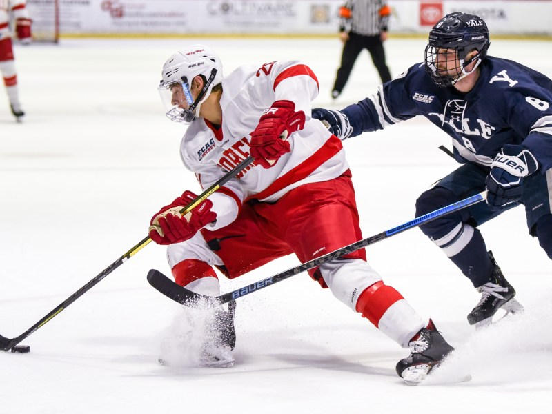 Cornell will face Yale at Madison Square Garden in November, Mike Schafer '86 told fans on Thursday.