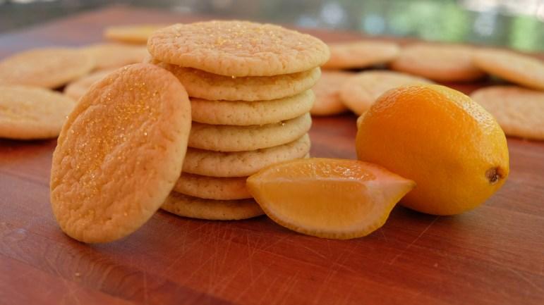 First batch of volume measured lemon sugar cookies. (Benjamin Velani / Sun Dining Editor)