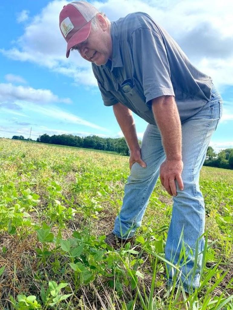 Spending the afternoon with organic farmer Klass Martens (Jack Waxman, Staff Writer)