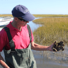 Gregg Rivara, Aquaculture Specialist at Cornell Cooperative Extension. (Courtesy of Friends of Bellport Bay)