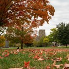 As fall foliage settles into Ithaca, the end of the in-person semester is quickly approaching, and students are beginning to consider their post-Thanksgiving plans.