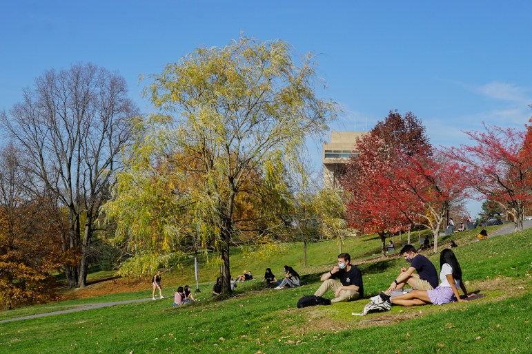 Students sitting on Libe Slope, basking in the autumn sun and a Biden-Harris win.