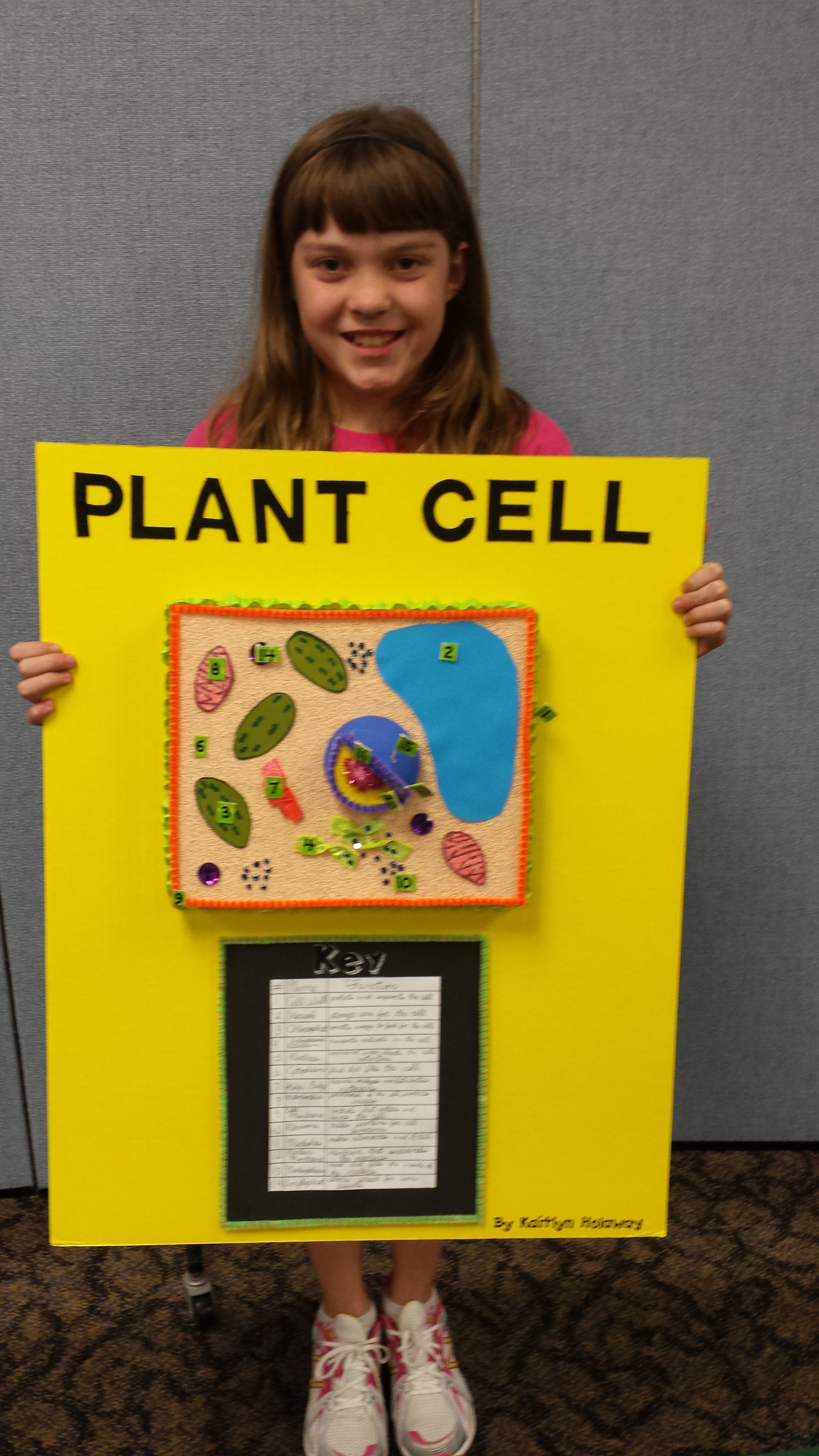 5th Grade Plant Cell Project