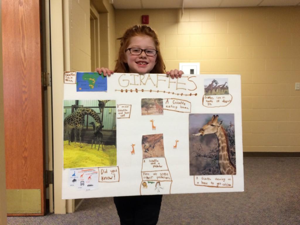 2nd Grade Animal Reports