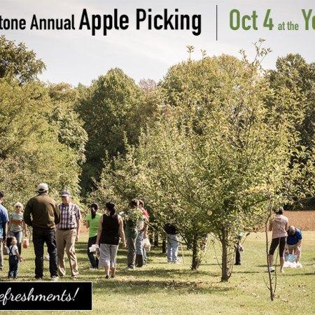 Cornerstone Annual Apple Picking