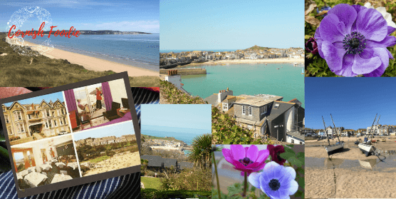 About Cornish Foodie
