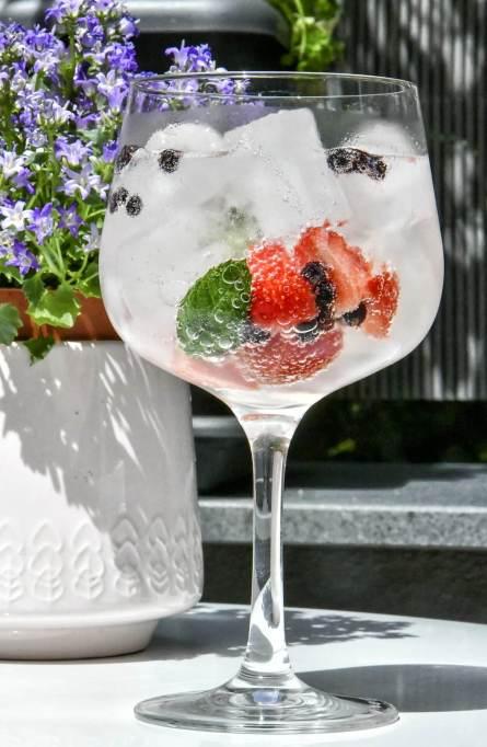 Cornish Gin and Tonic