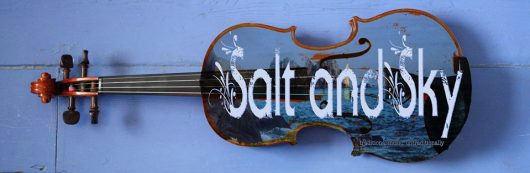 Salt and Sky Logo