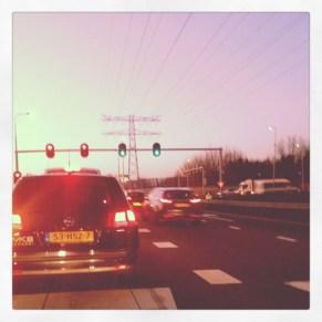 Instagram_cornutus_20121114 (9)