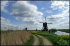 Kinderdijk9