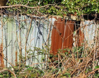 A rusty shed