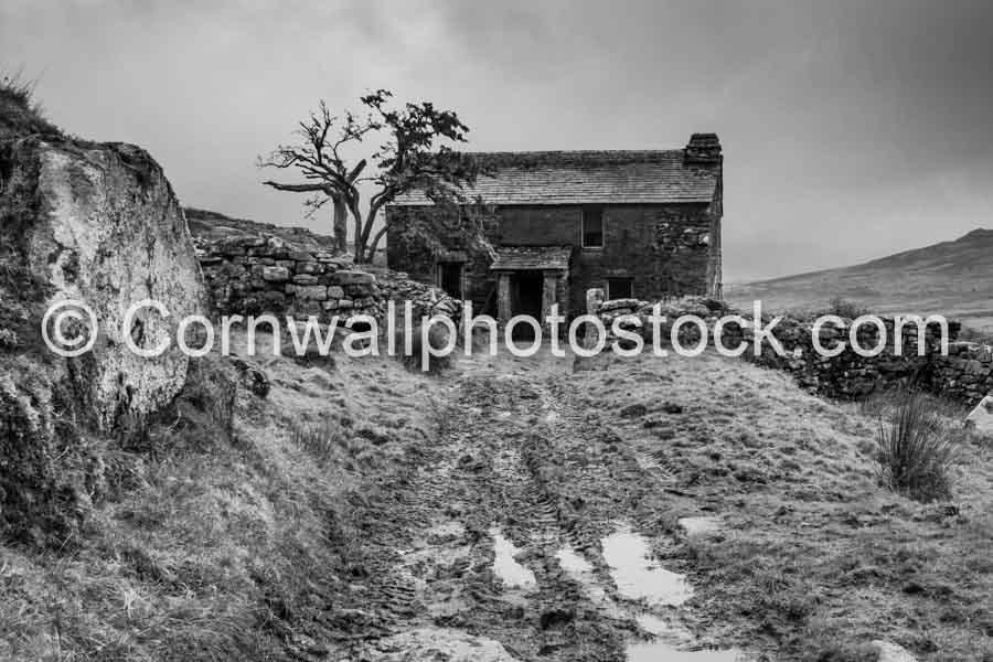 Old Farmhouse On Bodmin Moor