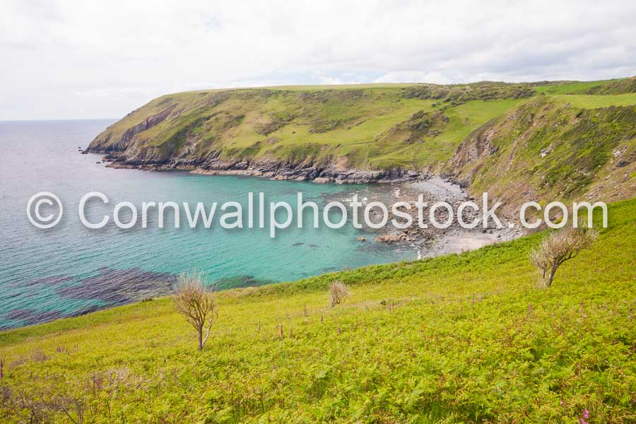 Rocky Cove With Background Grassy Cliffs