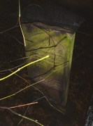 Gravestone with Flash