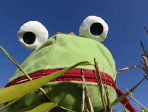 der versprochene Frosch