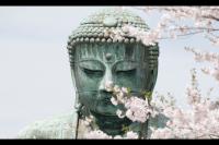 Corporate Christ - Buddhist Beliefs