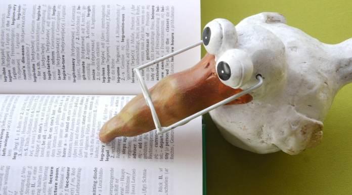 Figurine qui apprend du vocabulaire